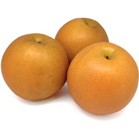 栃木県産 にっこり梨