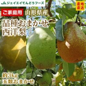 【予約受付】9/5~順次出荷【約3kg(玉数おまかせ)】品種おまかせ西洋梨 ※形不揃い ご家庭用
