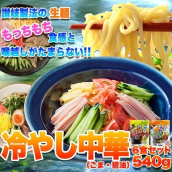 ポイント消化 期間限定 特別セット 冷やし中華 2種6食セット(醤油・ごま) 送料無料 セール