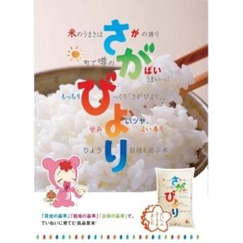 佐賀県産米 令和元年新米 さがびより 無洗米