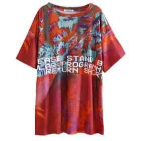 (ジャンーウェ)レディース 半袖 Tシャツ ゆったり プリント オーバーサイズ 着痩せ ティーシャツ ファッション ビックtシャツ ロング Tシャツワンピース プルオーバー ヒップホップ 写真通り