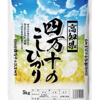 【9月限定】【令和元年産 新米】【5回定期便】四万十のこしひかり10kgを毎月お届け