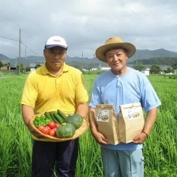 【9月限定】【令和元年産 新米】入田村のふるさと幸便 こしひかり10kg(5kg×2)