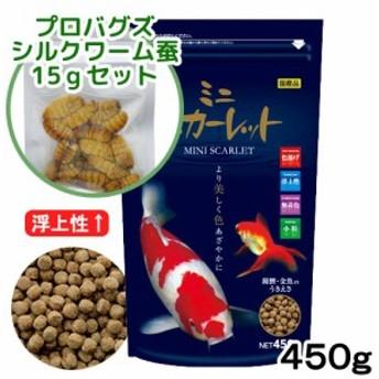 ミニスカーレット 450g+プロバグズ真空生昆虫シルクワーム蚕15gセット 錦鯉 餌