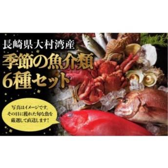【漁協直送!!】大村湾産 季節の魚介類詰合せセット【大村湾漁業協同組合】