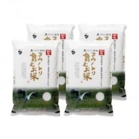 コウノトリ育むお米〔節減対象農薬:栽培期間中不使用〕【5kg×4袋】(94-002)
