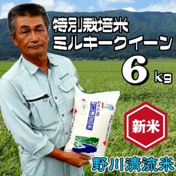 【特別栽培米】ミルキークイーン6kg<野川清流米>