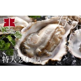 生牡蠣20個入(釧路管内産特大サイズ120g~150g)