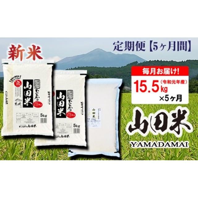 T60(5)-3401_つきたて山田米(15.5kg)5ヶ月定期便