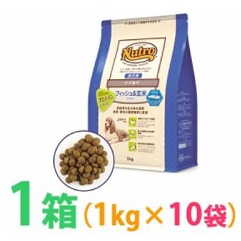 ◆《お得1箱(ケース)10袋セット》ナチュラルチョイス フィッシュ&玄米 ポテト入り 全犬種用 成犬用 1kg 【食物アレルギー