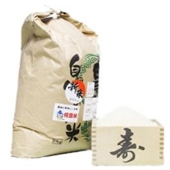 令和元年産 ながらのコシヒカリ新米10kg(精米)