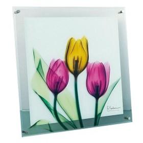 X RAY ガラス アート チューリップ Lサイズ XR-07004