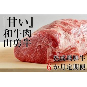 【数量限定】熟成 飛騨牛 山勇牛 6カ月 『甘い』和牛肉 お肉の定期便 熟成肉 しゃぶしゃぶ すき焼き ブロック肉 焼肉 ステーキ サーロイン ロース 肩ロース リブロース ランプ イチボ ミス