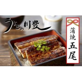 昭和56年創業うなぎの川豊蒲焼き5尾セット(有頭)