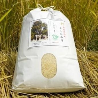 【令和元年産】特別栽培米「こしひかり」:農薬不使用「夫婦杉の里米」白米8kg