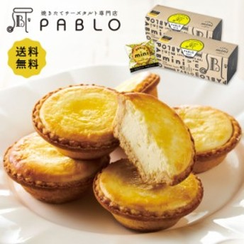 チーズケーキ タルト 敬老の日 PABLO mini 6個入り(プレーン) 2箱セット パブロ ミニ お菓子 誕生日 お取り寄せ スイーツ プレゼント 全