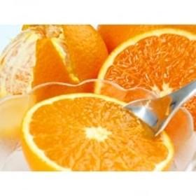 【ご家庭用】紀州有田産清見オレンジ 約7.5kg