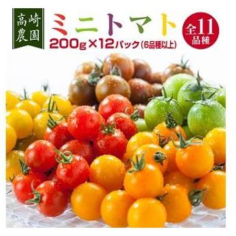 【数量限定】高崎農園 200g×12パック(6品種以上ミニトマト詰め合わせセット)<1-29>