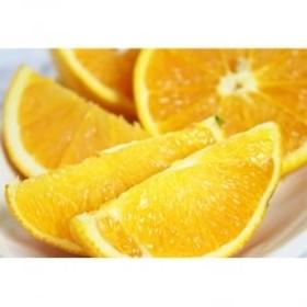 秀品 希少な国産バレンシアオレンジ 約5kg