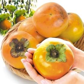 柿 福岡産 太秋 約8kg1箱 フルーツ 果物 国華園