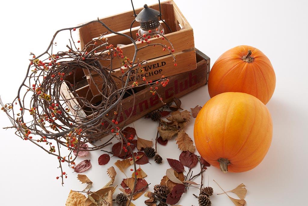 ハロウィンパーティを盛り上げる!華やかな飾り付けアイテム紹介
