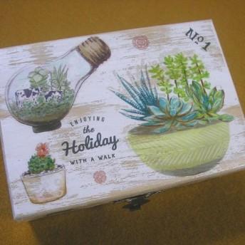 木製ジュエリーボックス 観葉植物 テラリウム