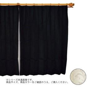 Arie(アーリエ) ロジック カーテン 2枚組 100×135