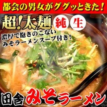 ☆【送料無料】讃岐 生極太 みそラーメン 5人前スープ付  1000円ぽっきり ポッキリ
