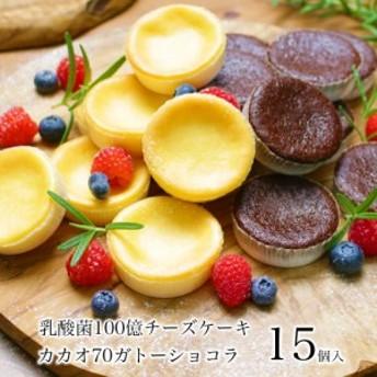 送料無料 ご自宅用 乳酸菌チーズケーキ&カカオ70ガトーショコラ15個入 スイーツ チョコ ポイント消化 訳あり でない