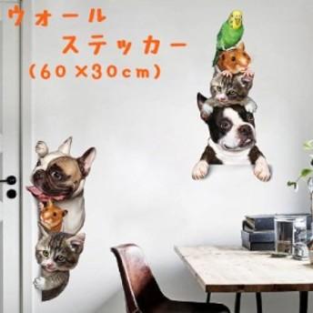 ウォールステッカー 壁紙シール ウォールシール アニマル 動物 犬 猫 ハムスター 可愛い かわいい おしゃれ 壁シール