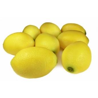 レモン (イエローEX) 模型 8個セット 食品サンプル ディスプレイに