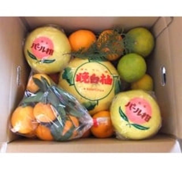 山本果樹園の柑橘詰め合わせセット(10kg)