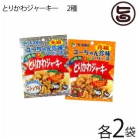 祐食品 とりかわジャーキー 45g 2種×各2袋セット 沖縄 土産 人気 おつまみ 珍味 おやつ  送料無料
