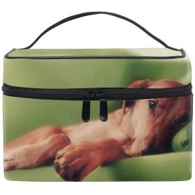 化粧ポーチ レディース 人気 コスメポーチ ポーチ 大容量 かわいい犬