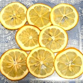 メイヤーレモン レモン 押しフルーツ 素材 8枚 ハーバリウム ボタニカルキャンドル アロマワックスバー ドライフラワー