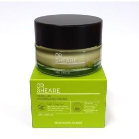 [BELOVE] ORSHEAREターンアップ栄養クリーム50ml /バランス、保湿、活性化、栄養 / 韓国化粧品 / Korean Cosmetics [並行輸入品]