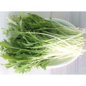 サラダ水菜 約150g 福岡産
