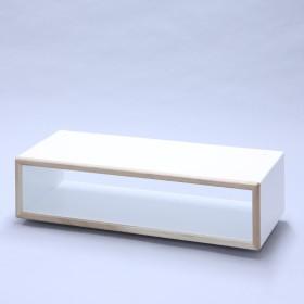 ディスプレイ用品 カラフルな 収納家具 素敵な 暮らし 最高級ディスプレイボックス 奥行き30cm 2L 片面タイプ ブラック
