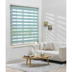 サイズ オーダーメイド, [Winsharp Basic, mint, W 90 x H 90 (CM)] 調光ロールアップ スクリーン 窓 プリーツ ブラインド & カーテン 簾
