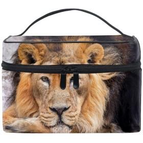収納ポーチ 通勤 出張 旅行 大容量 ライオン軽量 携帯 便利