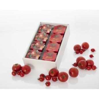 【太陽からの贈り物】日向の雫 プレミアムトマトジュースとたっぷりトマトのプレミアムゼリー詰め合わせ(各4個入り)