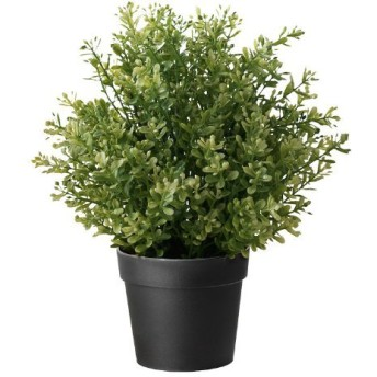 (1) - Ikea Artificial Potted Plant, Thyme, 24cm