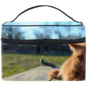 猫の子猫赤うそトイレタリーバッグ 収納ケース メイク収納 小物入れ 仕分け収納 防水 大容量 出張 旅行用