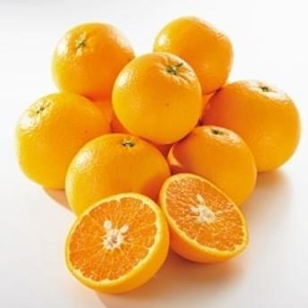 【2020年 3月以降発送】和歌山の希少柑橘 甘くて爽やかな春柑橘 和歌山県産 春峰 5kg