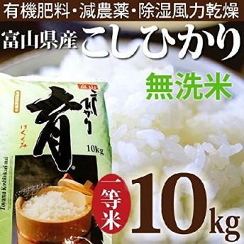 新米 平成31年度産 こしひかり 富山県産 無洗米 10kg カナダ農園 育 はぐくみ