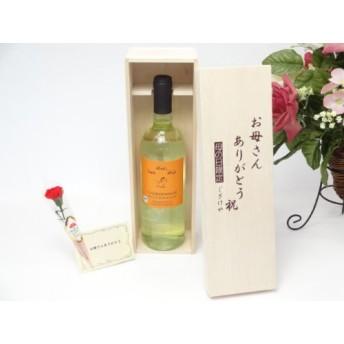 母の日 ギフトセット ワインセット お母さんありがとう木箱セット(チェロ ビォ・ビォ・ビォ シャルドネ IGT 白ワイン(イタリア)750ml)母の日