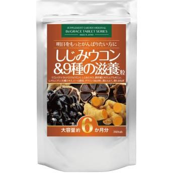 しじみウコン&9種の滋養粒 大容量約6ヶ月分/360粒(クルクミン3600mg高配合ウコン、オルニチン3600mg、肝臓エキス10800mg、L-アルギニン、牡蠣エキス、亜鉛含有酵母、タウリン、黒にんにく、黒たまねぎ)