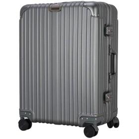 大容量トロリーケース、360°ミュートキャスター付き荷物、ABS + PC耐傷性スーツケース、TSA税関ロック3桁ロックボックス、学校ビジネス休暇旅行-grey-