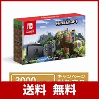 Nintendo Switch Minecraft (マインクラフト) セット+ニンテンドーeショップでつかえるニンテンドープリペイド番号3000円分