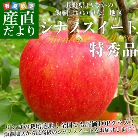 送料無料 長野県より産地直送 JAながの 飯綱(いいづな)地区 シナノスイート 特秀品 5キロ(14玉から18玉) リンゴ 林檎